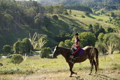 Summer Horse Riding Camps for Kids Beenaam Valley Other 2